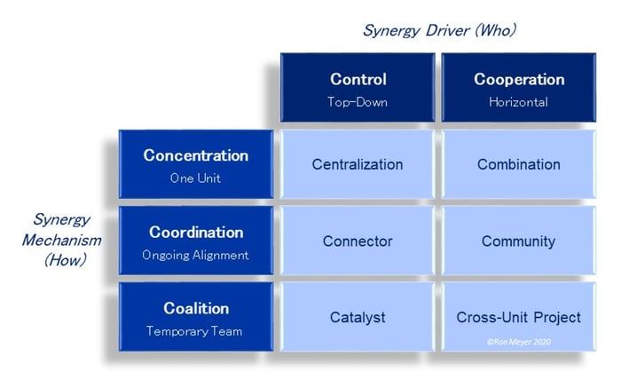 8_11C Synergy Model