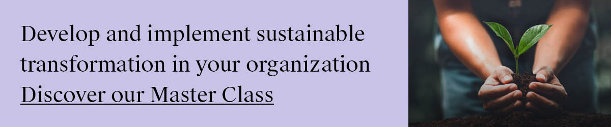 AMS_Sustainable_transformation_banners_blog2