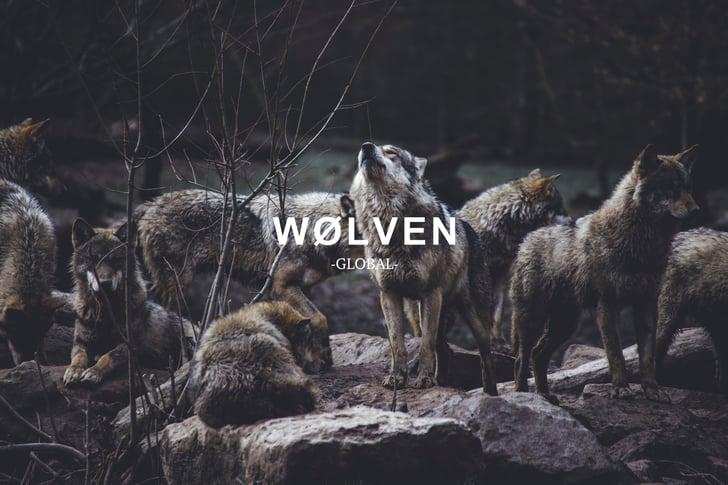 merk wolven (1)
