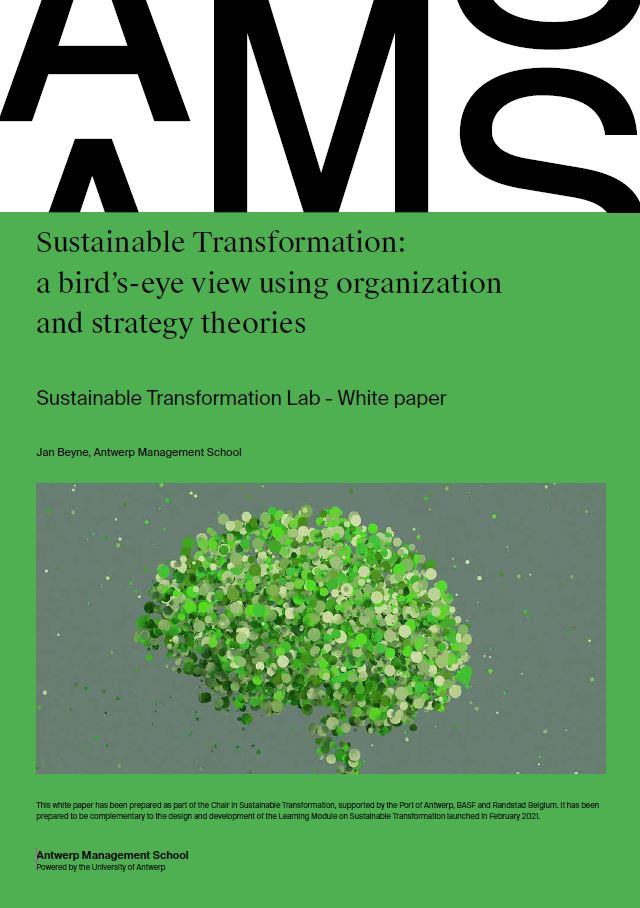Sustainable Transformation: a bird's-eye view using organization and strategy theories