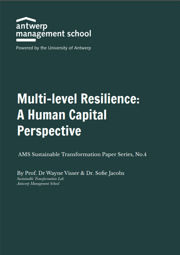 Multi-level Resilience – A Human Capital Perspective